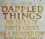banner-dappled-things